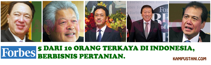 orang terkaya di Indonesia 2016 versi Forbes
