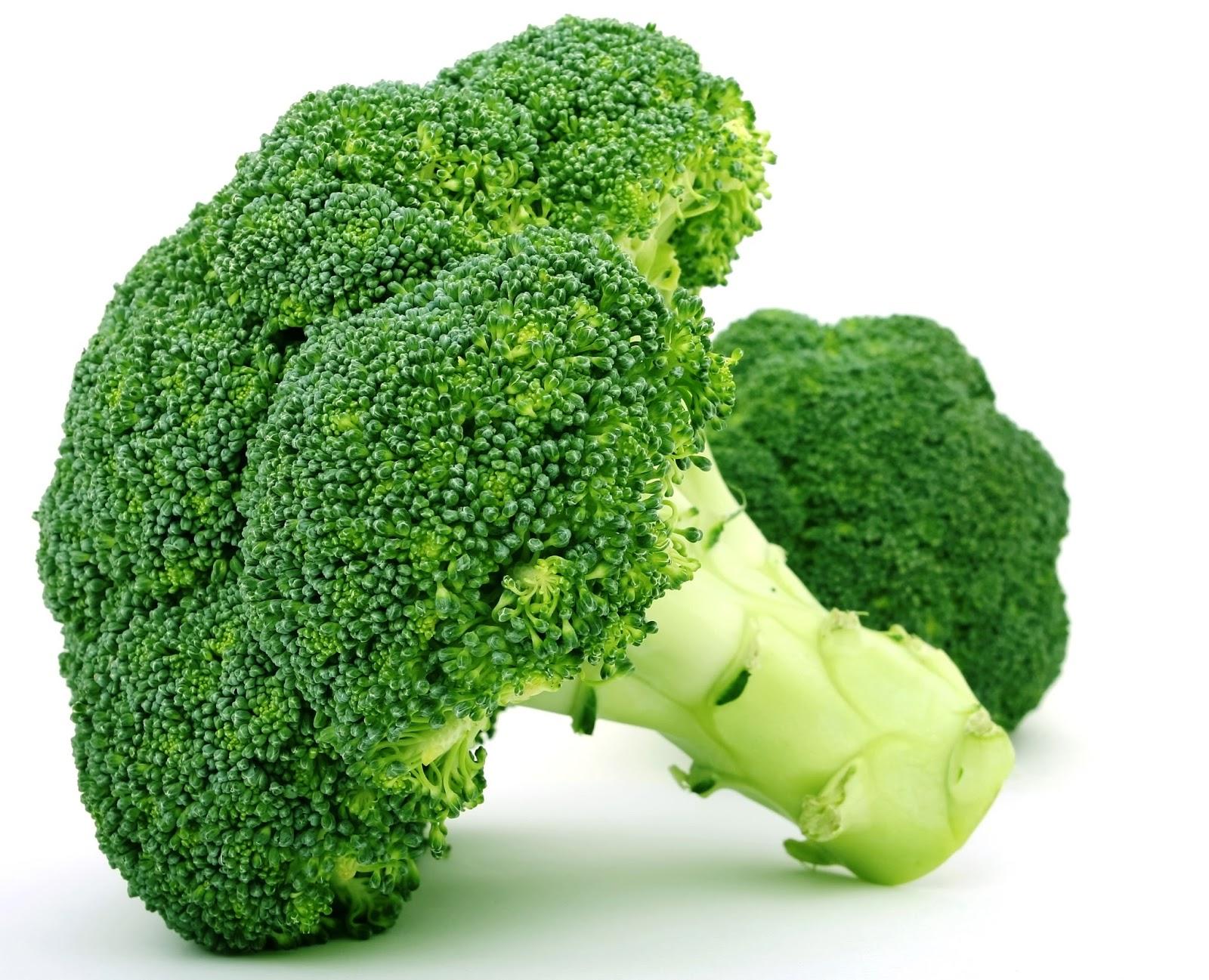 budidaya tanaman brokoli