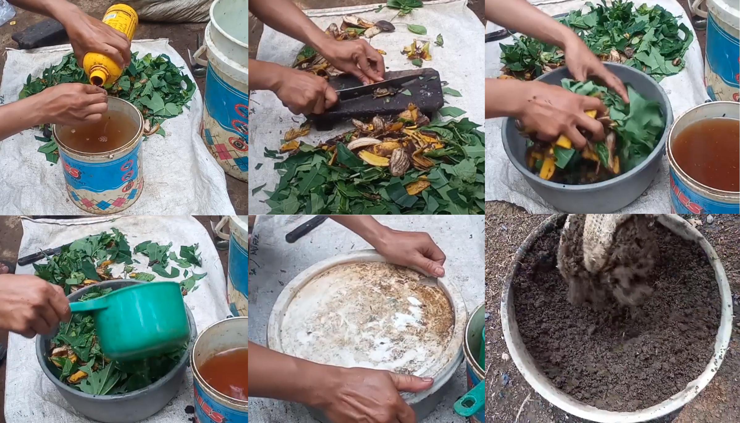 Cara Membuat Pupuk Kompos Dari Sampah Rumah Tangga Kampustani Com